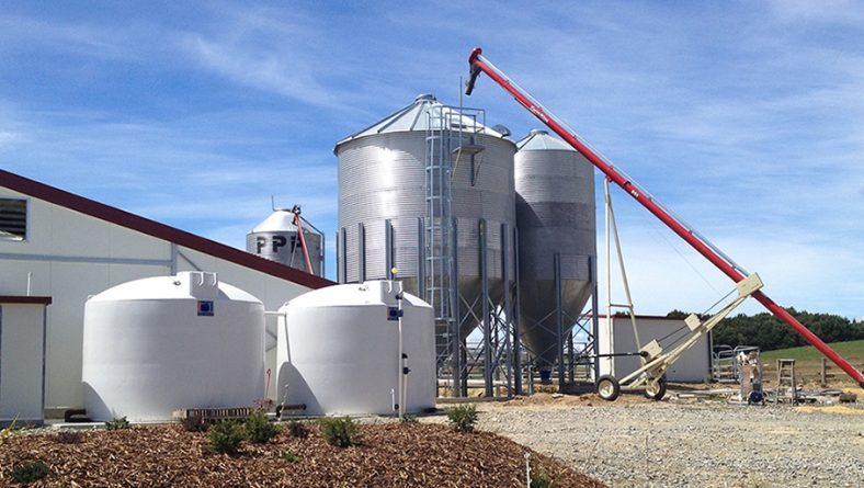 """Timaru construction firm fined after worker injured in 2.9m fall – what """"working at heights"""" hazards are there on your farm?"""
